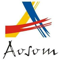 aosom.it